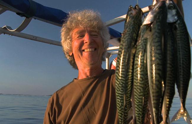 Abondance à la pêche au maquereau