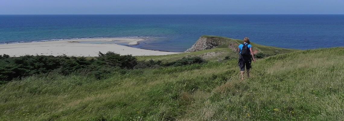 La plage de Brion