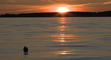 Coucher du soleil, partie de pêche
